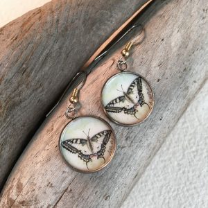 Oregon Swallowtail Butterfly Art Print Earrings