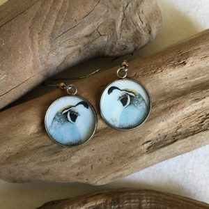 California Quail Art Print Earrings