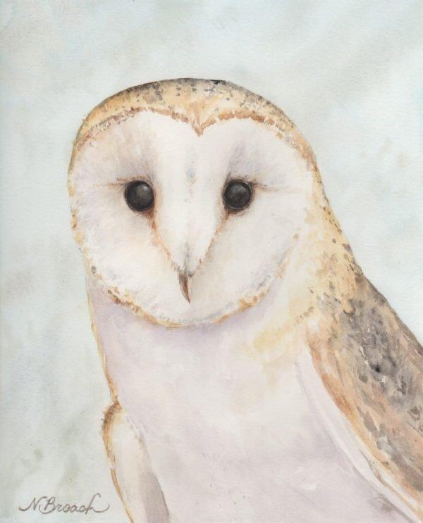 Barn Owl Fine Art Giclée Print