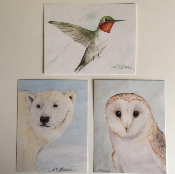polarbear, hummer and owl postcard bundle